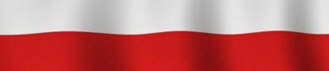 Что такое польские коридоры в ставках